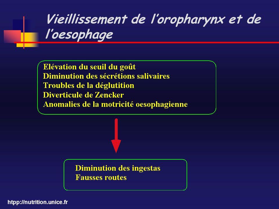 htpp://nutrition.unice.fr Vieillissement de loropharynx et de loesophage