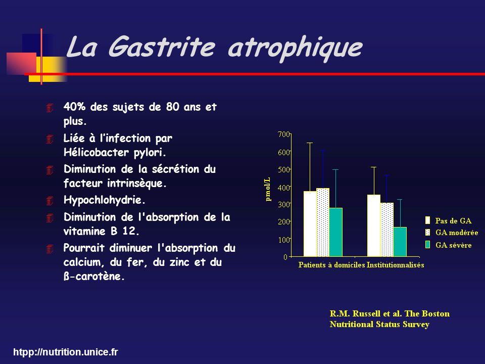 htpp://nutrition.unice.fr La Gastrite atrophique 4 40% des sujets de 80 ans et plus. 4 Liée à linfection par Hélicobacter pylori. 4 Diminution de la s