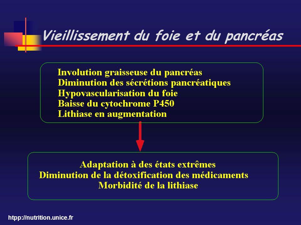 htpp://nutrition.unice.fr Vieillissement du foie et du pancréas