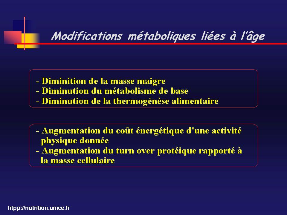 htpp://nutrition.unice.fr Modifications métaboliques liées à lâge