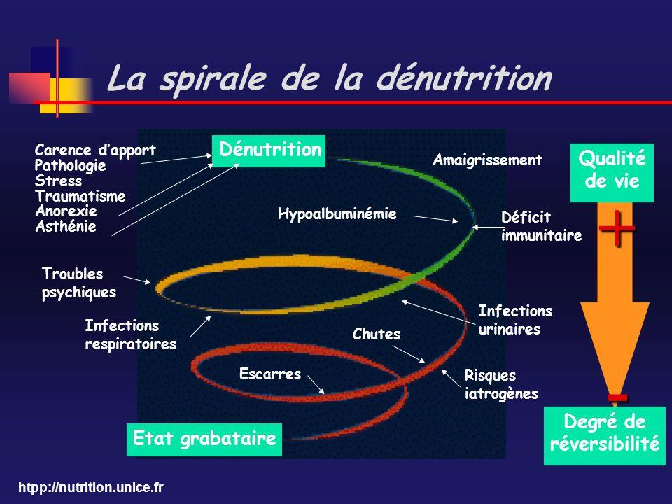 htpp://nutrition.unice.fr Qualité de vie + - Degré de réversibilité Dénutrition Etat grabataire Carence dapport Pathologie Stress Traumatisme Anorexie