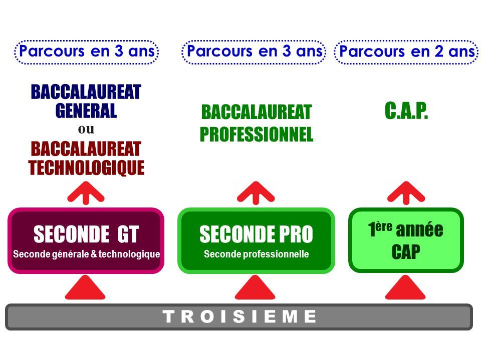 T R O I S I E M E SECONDE GT Seconde générale & technologique BACCALAUREAT GENERAL ou BACCALAUREAT TECHNOLOGIQUE BACCALAUREAT PROFESSIONNEL C.A.P.
