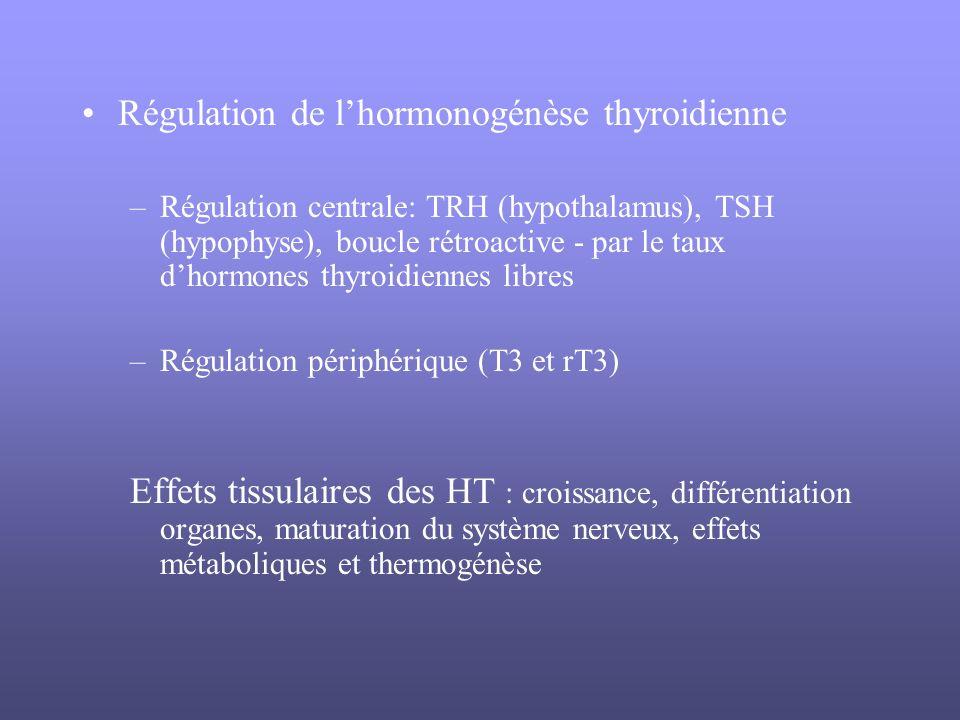 Régulation de lhormonogénèse thyroidienne –Régulation centrale: TRH (hypothalamus), TSH (hypophyse), boucle rétroactive - par le taux dhormones thyroi