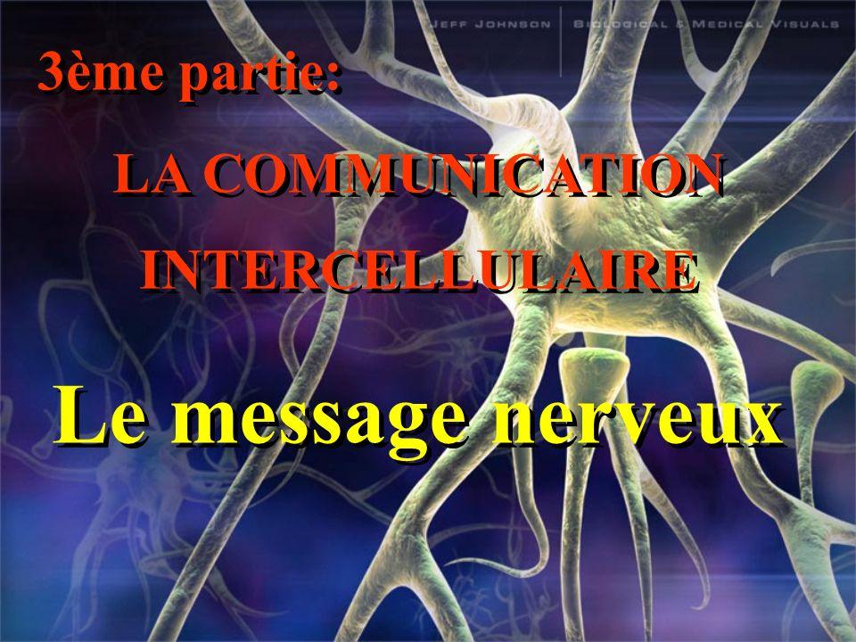 3ème partie: LA COMMUNICATION INTERCELLULAIRE Le message nerveux 3ème partie: LA COMMUNICATION INTERCELLULAIRE Le message nerveux