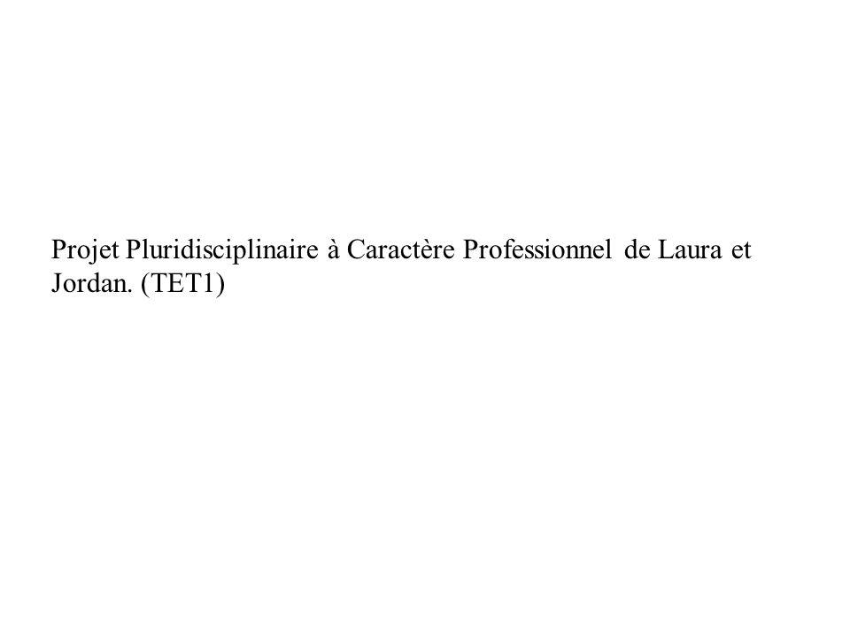 Projet Pluridisciplinaire à Caractère Professionnel de Laura et Jordan. (TET1)