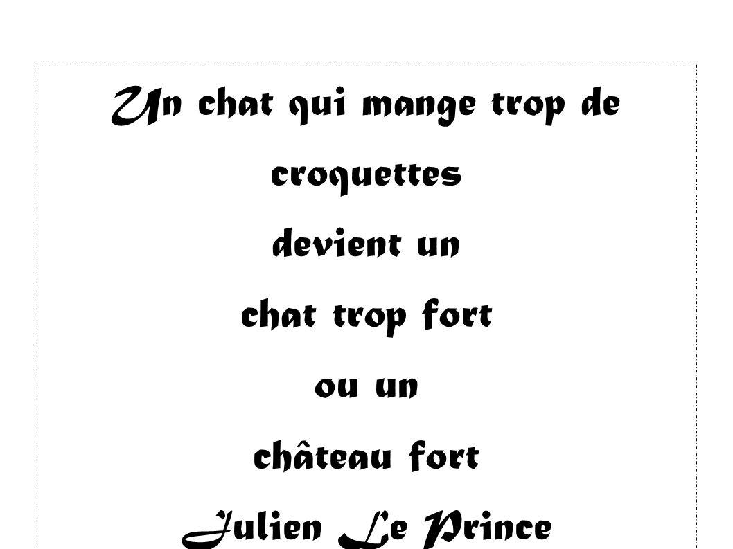 Un chat qui mange trop de croquettes devient un chat trop fort ou un château fort Julien Le Prince