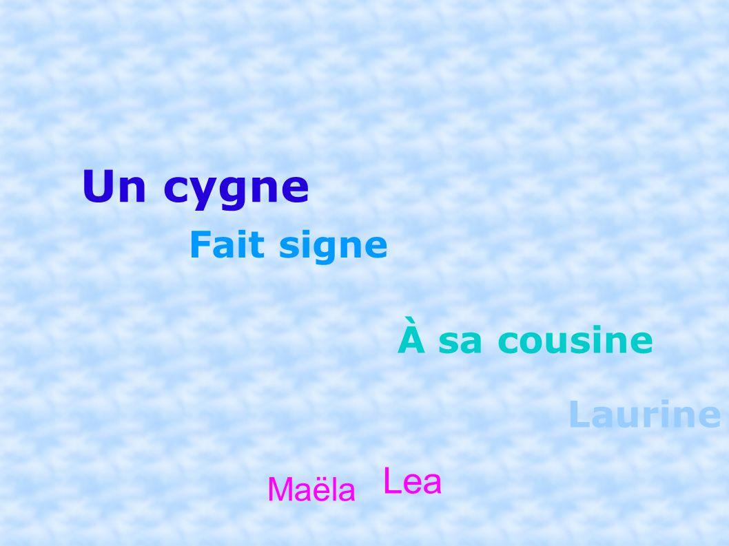 Un cygne Fait signe À sa cousine Laurine Maëla Lea