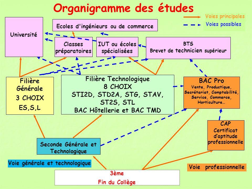 Organigramme des études Filière Technologique 8 CHOIX STI2D, STD2A, STG, STAV, ST2S, STL BAC Hôtellerie et BAC TMD Filière Générale 3 CHOIX ES,S,L Voi
