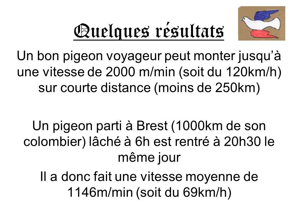 Quelques résultats Un bon pigeon voyageur peut monter jusquà une vitesse de 2000 m/min (soit du 120km/h) sur courte distance (moins de 250km) Un pigeo