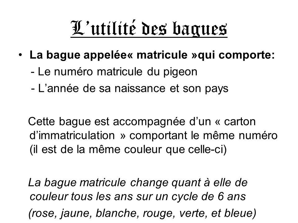 Lutilité des bagues La bague appelée« matricule »qui comporte: - Le numéro matricule du pigeon - Lannée de sa naissance et son pays Cette bague est ac