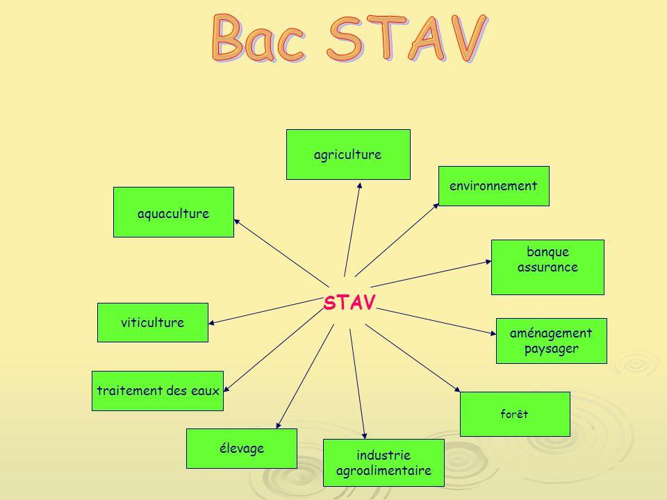 STAV traitement des eaux élevage viticulture aquaculture industrie agroalimentaire forêt aménagement paysager agriculture environnement banque assurance