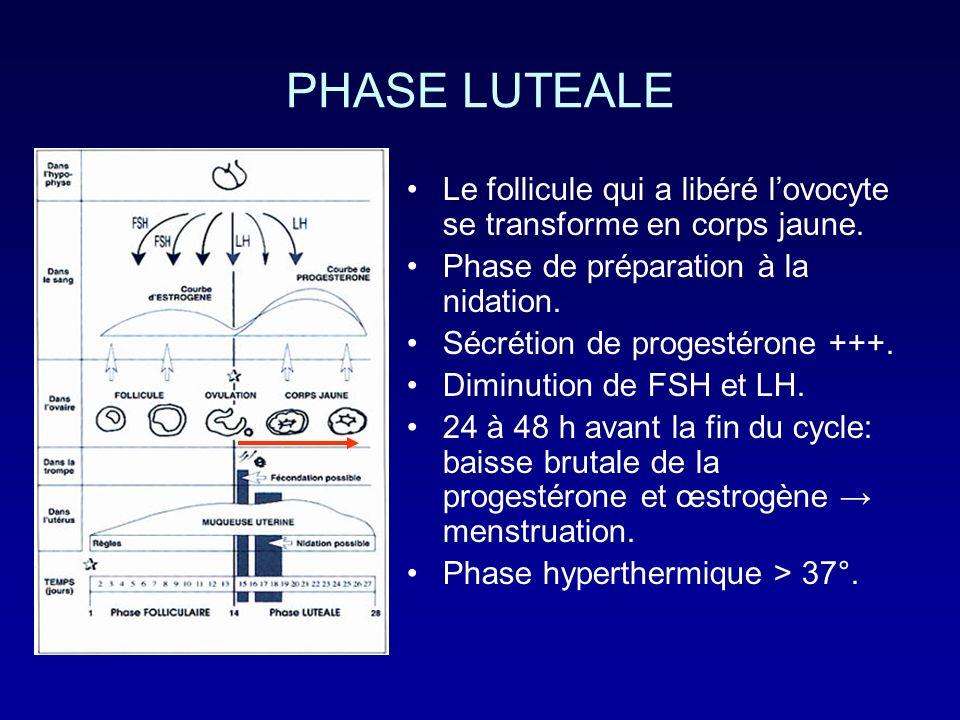 PHASE LUTEALE Le follicule qui a libéré lovocyte se transforme en corps jaune. Phase de préparation à la nidation. Sécrétion de progestérone +++. Dimi