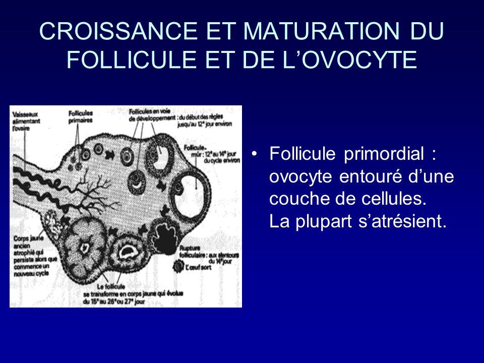 CROISSANCE ET MATURATION DU FOLLICULE ET DE LOVOCYTE Follicule primordial : ovocyte entouré dune couche de cellules. La plupart satrésient.