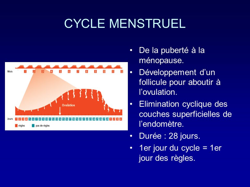 CYCLE MENSTRUEL De la puberté à la ménopause. Développement dun follicule pour aboutir à lovulation. Elimination cyclique des couches superficielles d