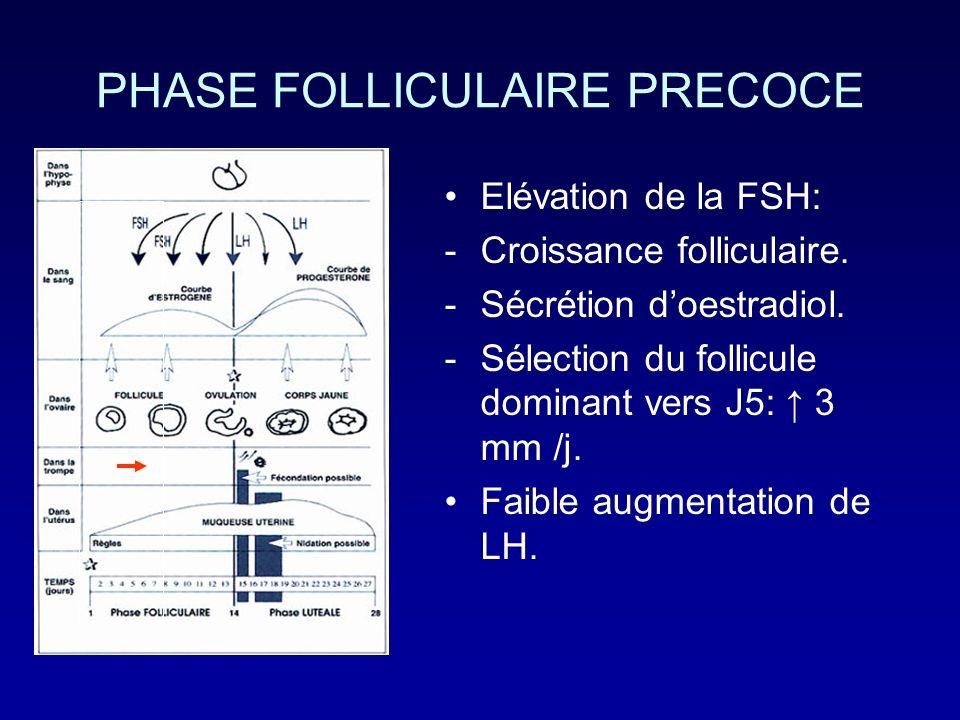 PHASE FOLLICULAIRE PRECOCE Elévation de la FSH: -Croissance folliculaire. -Sécrétion doestradiol. -Sélection du follicule dominant vers J5: 3 mm /j. F