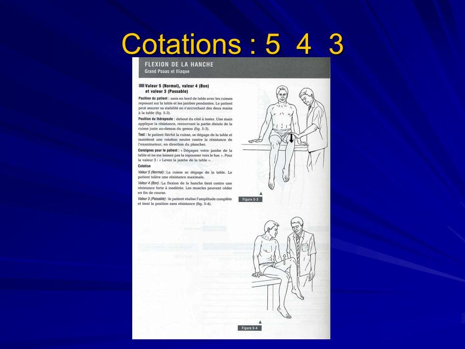 Cotation 2