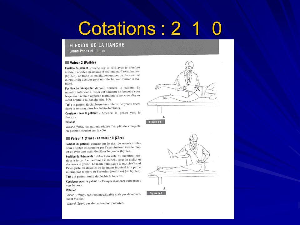 MOYEN ET PETIT FESSIER cotations : 5 4 3