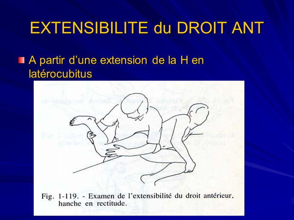 EXTENSIBILITE du DROIT ANT A partir dune extension de la H en latérocubitus