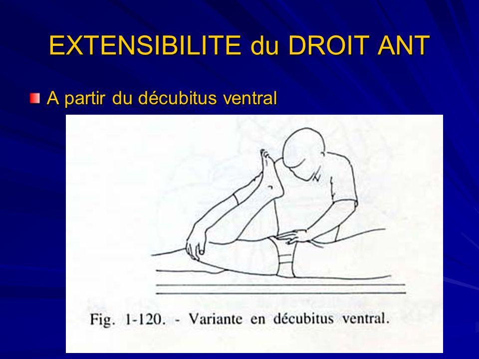 EXTENSIBILITE du DROIT ANT A partir du décubitus ventral