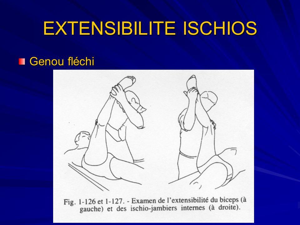 EXTENSIBILITE ISCHIOS Genou fléchi