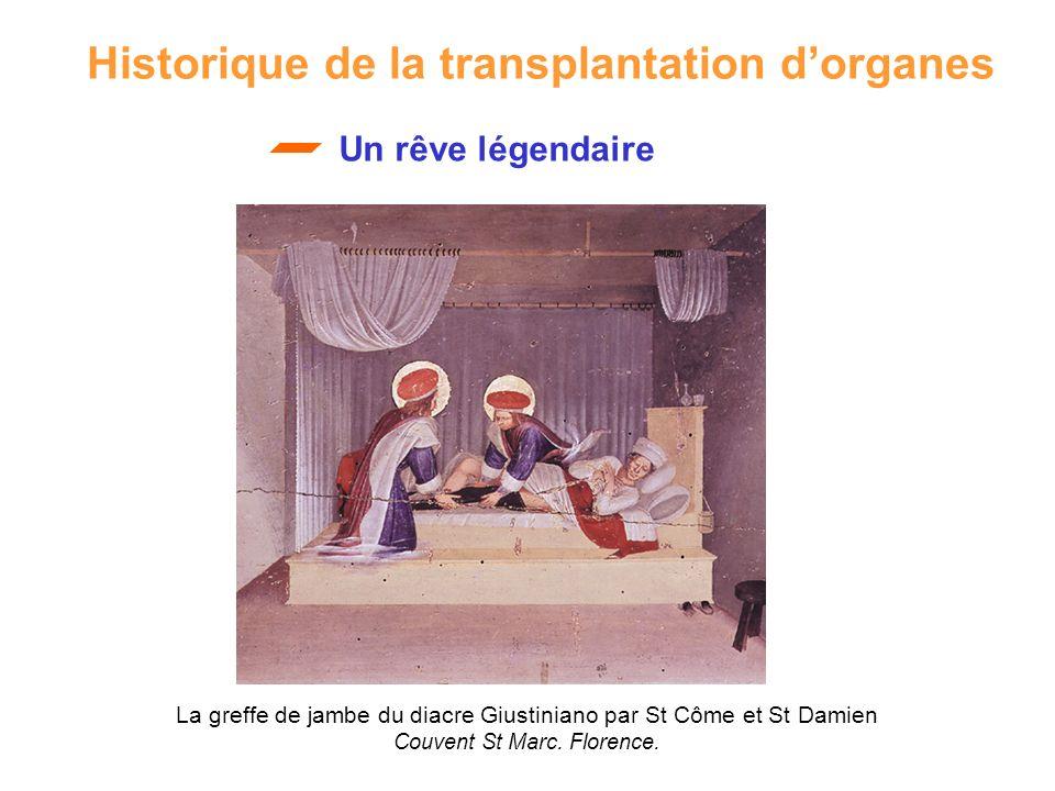 La greffe de jambe du diacre Giustiniano par St Côme et St Damien Couvent St Marc. Florence. Historique de la transplantation dorganes Un rêve légenda