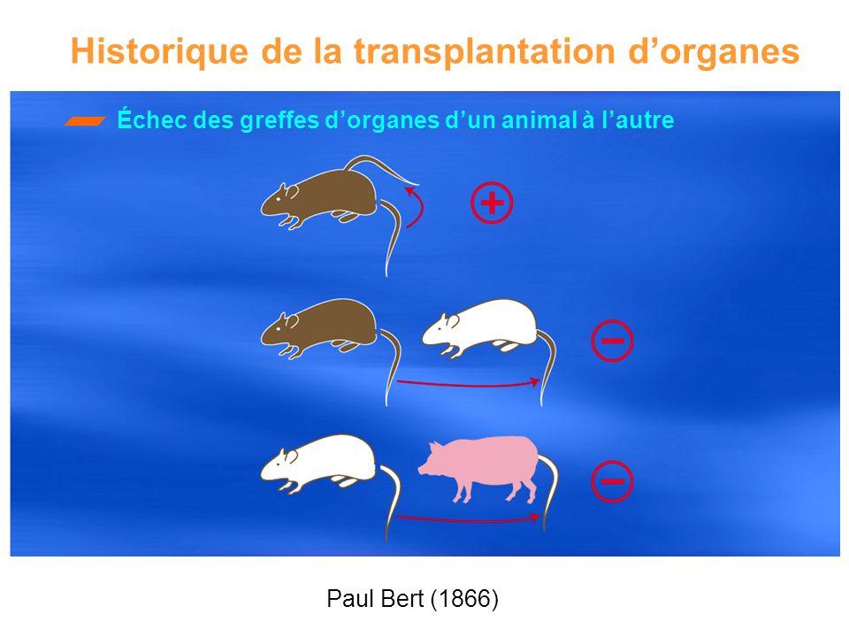 Échec des greffes dorganes dun animal à lautre Historique de la transplantation dorganes Paul Bert (1866)