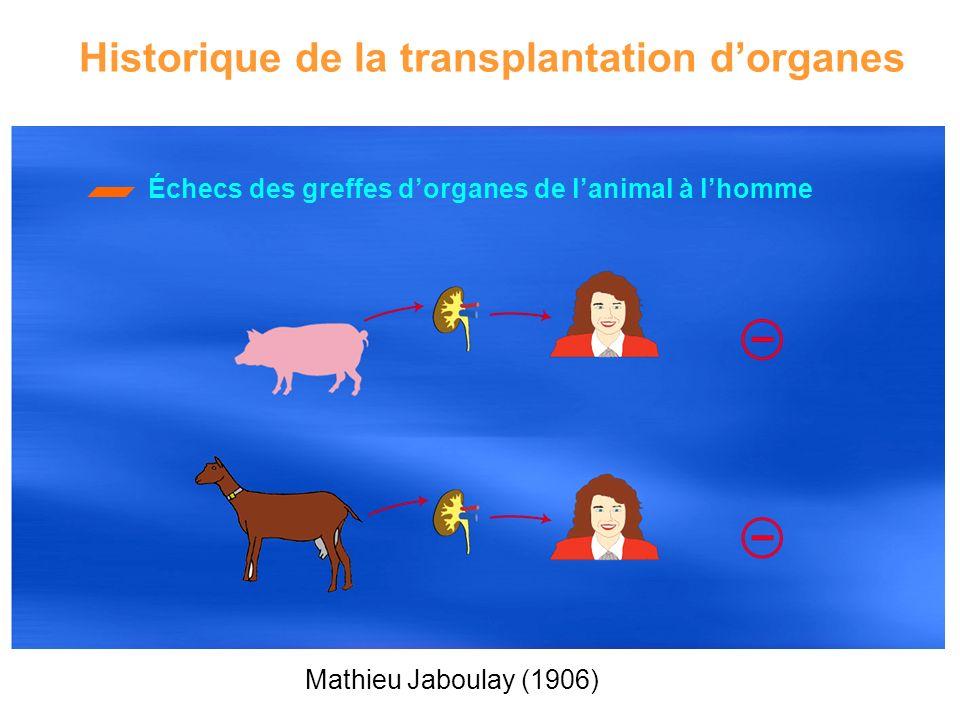 Historique de la transplantation dorganes Échecs des greffes dorganes de lanimal à lhomme Mathieu Jaboulay (1906)