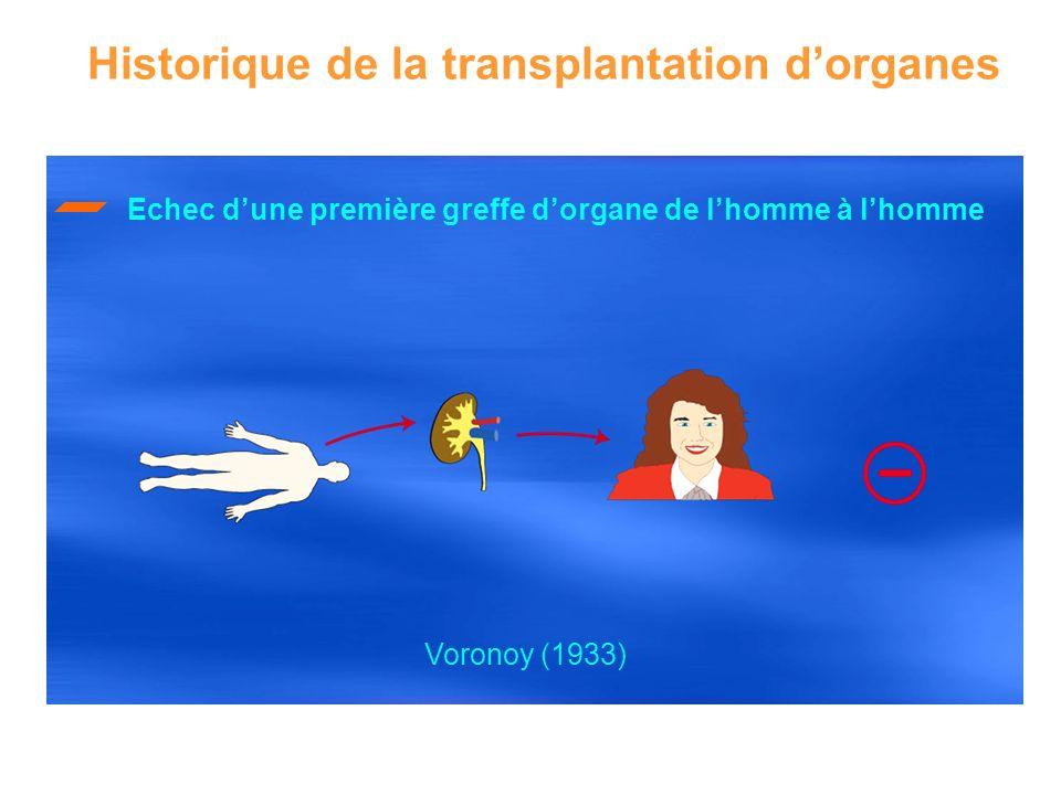 Echec dune première greffe dorgane de lhomme à lhomme Historique de la transplantation dorganes Voronoy (1933)