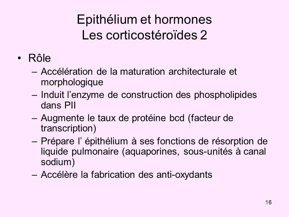 16 Epithélium et hormones Les corticostéroïdes 2 Rôle –Accélération de la maturation architecturale et morphologique –Induit lenzyme de construction d