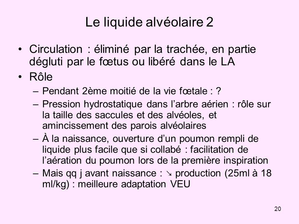 20 Le liquide alvéolaire 2 Circulation : éliminé par la trachée, en partie dégluti par le fœtus ou libéré dans le LA Rôle –Pendant 2ème moitié de la v