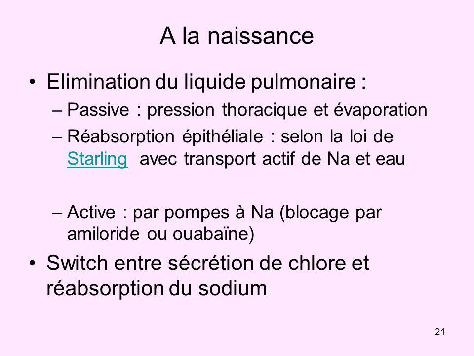 21 A la naissance Elimination du liquide pulmonaire : –Passive : pression thoracique et évaporation –Réabsorption épithéliale : selon la loi de Starli