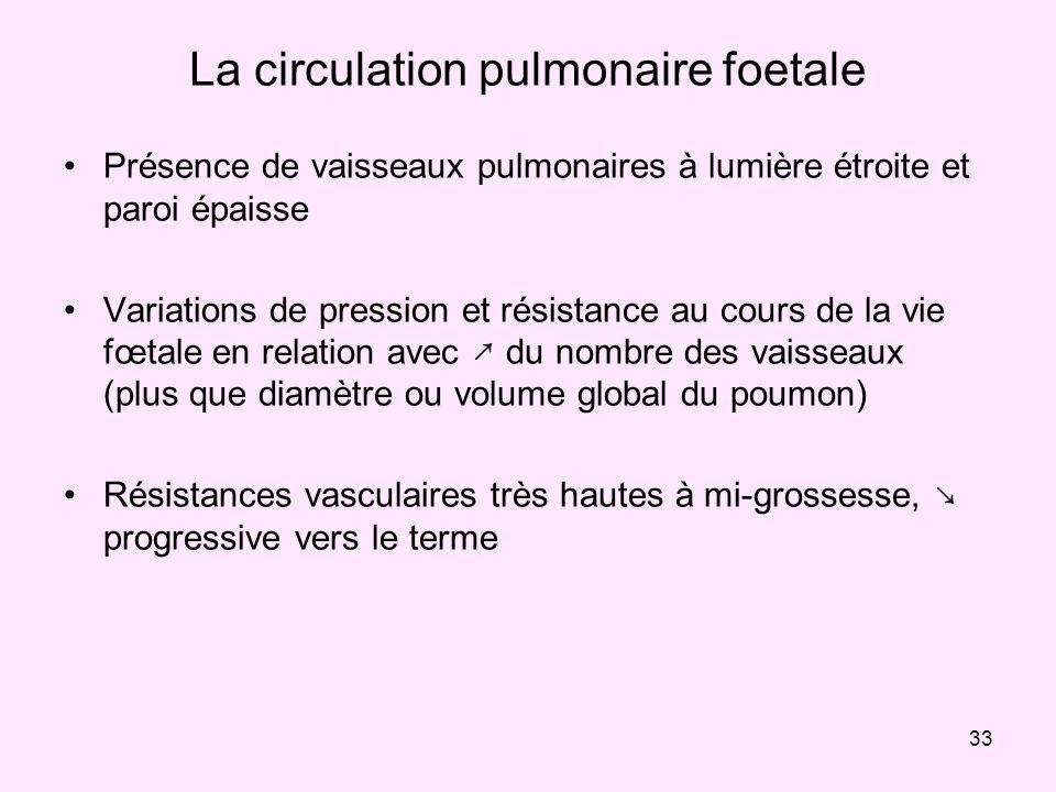 33 La circulation pulmonaire foetale Présence de vaisseaux pulmonaires à lumière étroite et paroi épaisse Variations de pression et résistance au cour