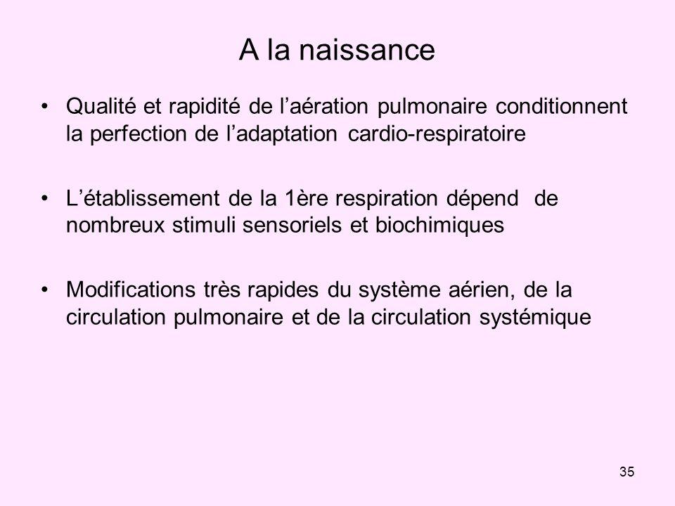 35 A la naissance Qualité et rapidité de laération pulmonaire conditionnent la perfection de ladaptation cardio-respiratoire Létablissement de la 1ère