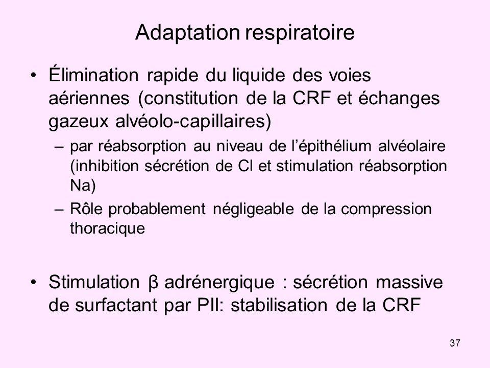 37 Adaptation respiratoire Élimination rapide du liquide des voies aériennes (constitution de la CRF et échanges gazeux alvéolo-capillaires) –par réab