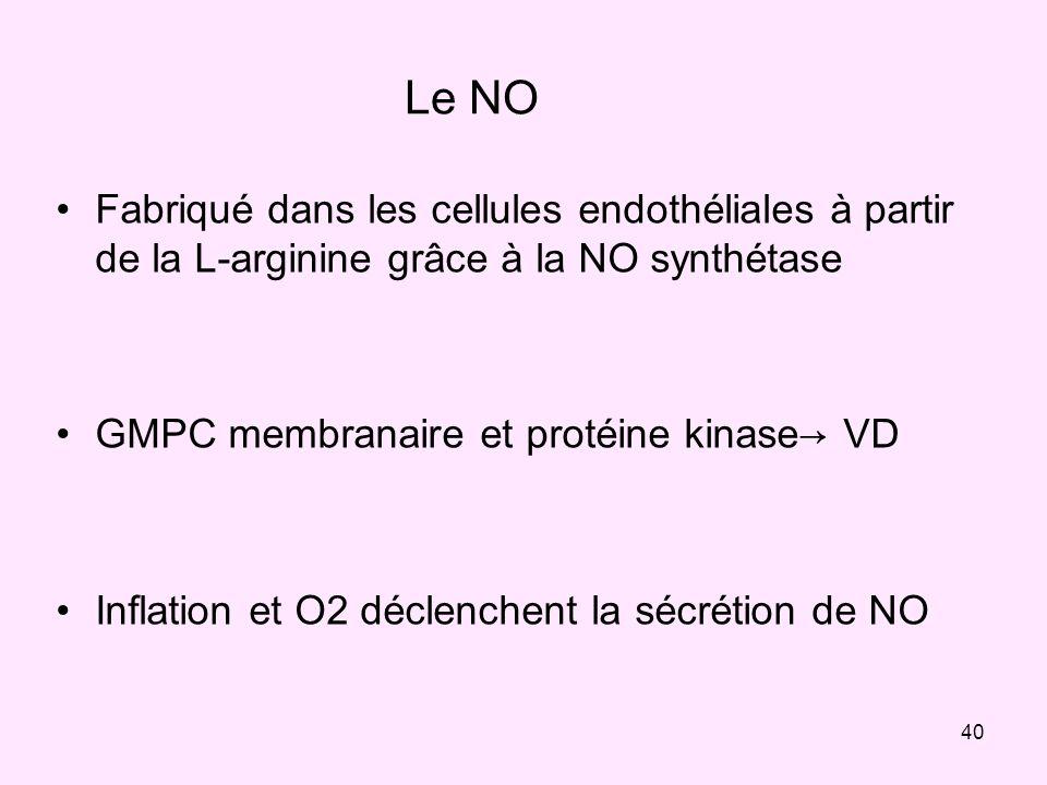 40 Le NO Fabriqué dans les cellules endothéliales à partir de la L-arginine grâce à la NO synthétase GMPC membranaire et protéine kinase VD Inflation