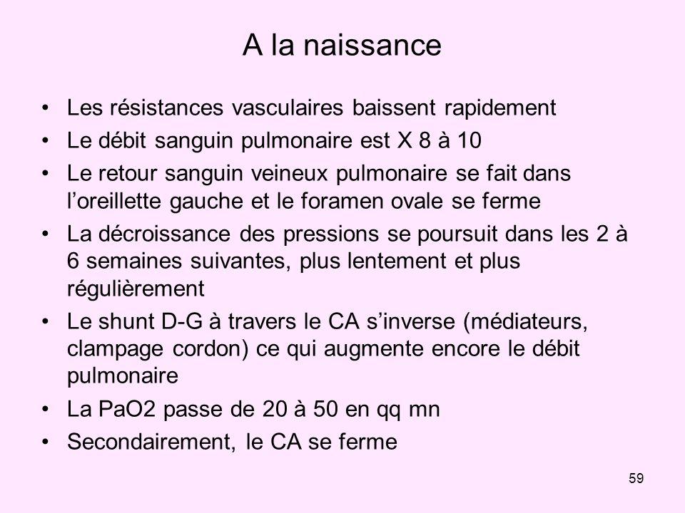 59 A la naissance Les résistances vasculaires baissent rapidement Le débit sanguin pulmonaire est X 8 à 10 Le retour sanguin veineux pulmonaire se fai