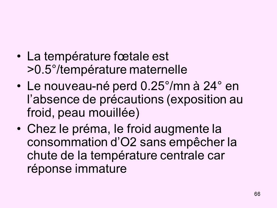 66 La température fœtale est >0.5°/température maternelle Le nouveau-né perd 0.25°/mn à 24° en labsence de précautions (exposition au froid, peau moui