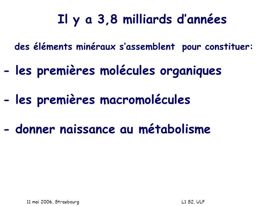 11 mai 2006, Strasbourg L1 S2, ULP Il y a 3,8 milliards dannées des éléments minéraux sassemblent pour constituer: - les premières molécules organique