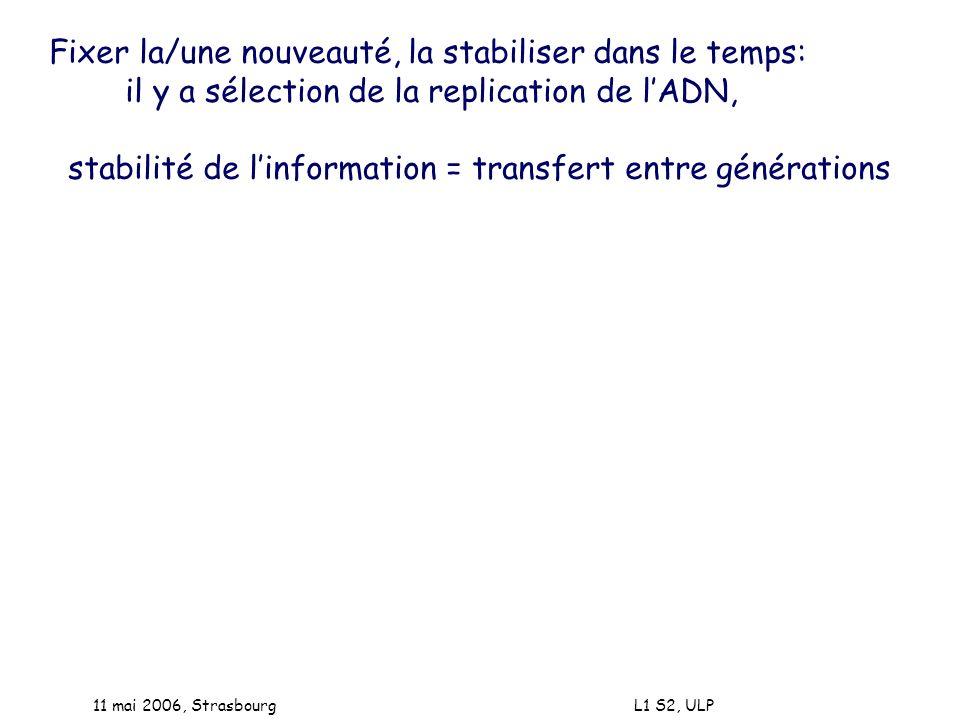 11 mai 2006, Strasbourg L1 S2, ULP Fixer la/une nouveauté, la stabiliser dans le temps: il y a sélection de la replication de lADN, stabilité de linfo