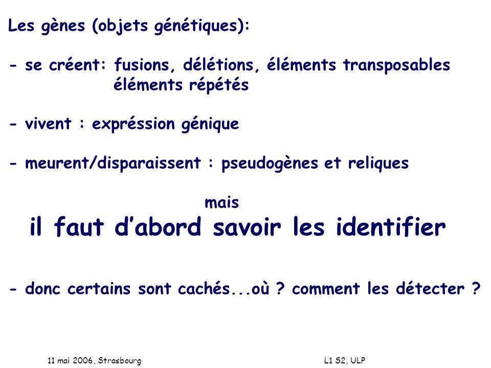 11 mai 2006, Strasbourg L1 S2, ULP Les gènes (objets génétiques): - se créent: fusions, délétions, éléments transposables éléments répétés - vivent :