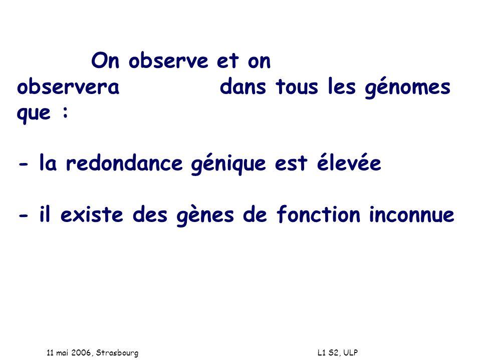 11 mai 2006, Strasbourg L1 S2, ULP On observe et on observera dans tous les génomes que : - la redondance génique est élevée - il existe des gènes de
