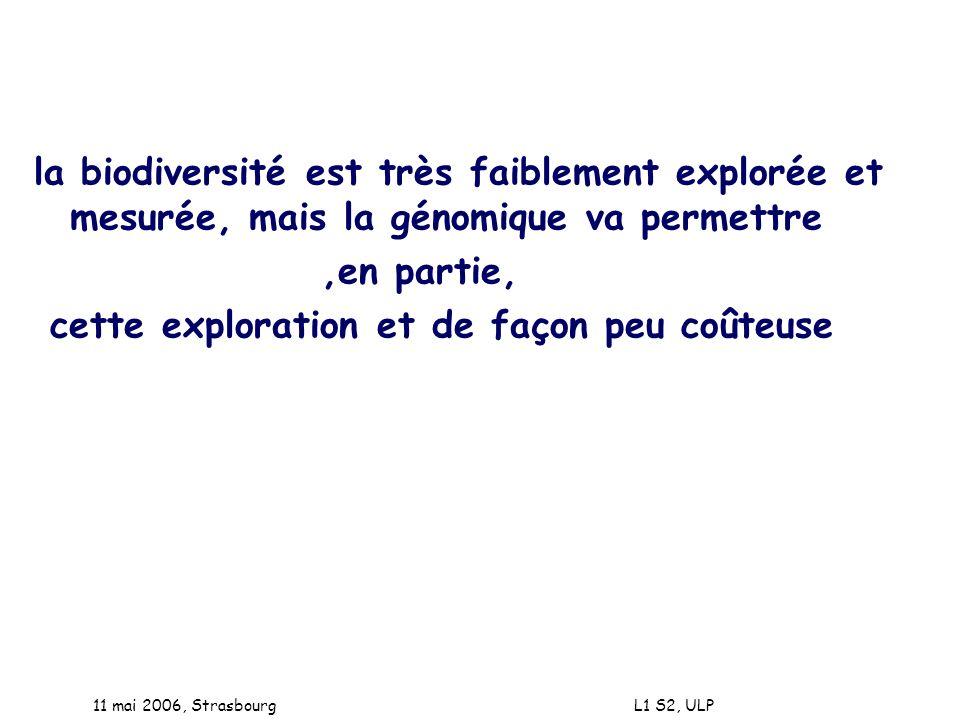 11 mai 2006, Strasbourg L1 S2, ULP la biodiversité est très faiblement explorée et mesurée, mais la génomique va permettre,en partie, cette exploratio