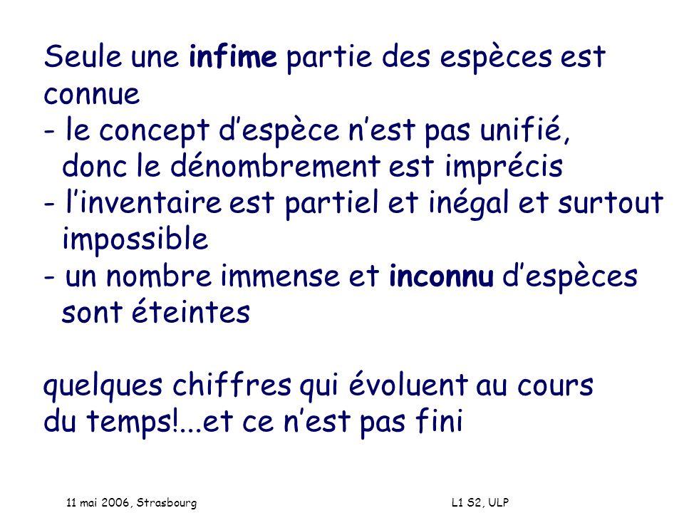 11 mai 2006, Strasbourg L1 S2, ULP Les gènes (objets génétiques): - se créent: fusions, délétions, éléments transposables éléments répétés - vivent : expréssion génique - meurent/disparaissent : pseudogènes et reliques mais il faut dabord savoir les identifier - donc certains sont cachés...où .