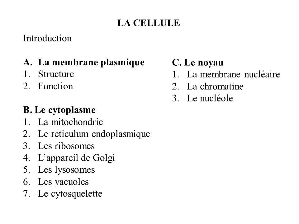 LA CELLULE Introduction A.La membrane plasmique 1.Structure 2.Fonction B. Le cytoplasme 1.La mitochondrie 2.Le reticulum endoplasmique 3.Les ribosomes