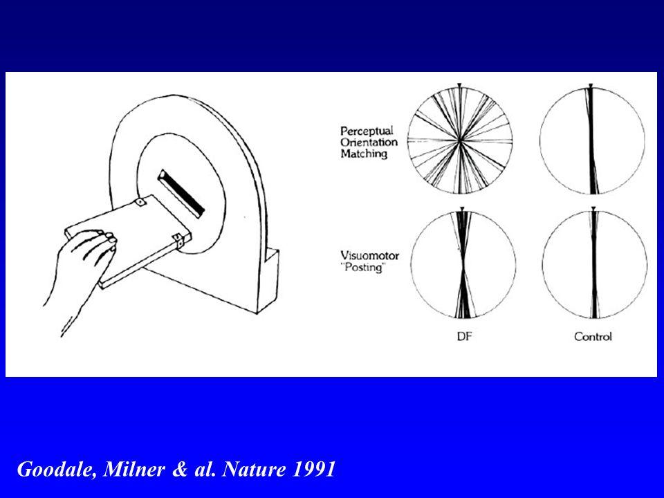 http://images.slideplayer.fr/1/186338/slides/slide_11.jpg