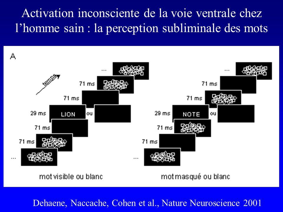 Activation inconsciente de la voie ventrale chez lhomme sain : la perception subliminale des mots Dehaene, Naccache, Cohen et al., Nature Neuroscience