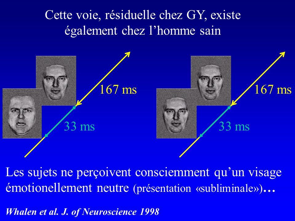 Cette voie, résiduelle chez GY, existe également chez lhomme sain Les sujets ne perçoivent consciemment quun visage émotionellement neutre (présentati