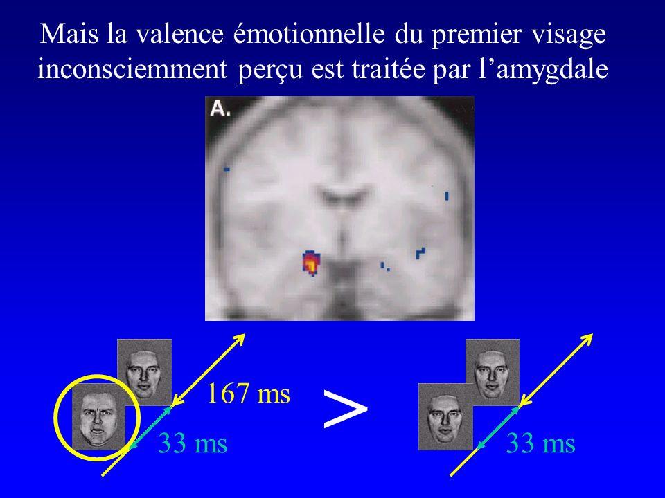Mais la valence émotionnelle du premier visage inconsciemment perçu est traitée par lamygdale 33 ms 167 ms 33 ms >