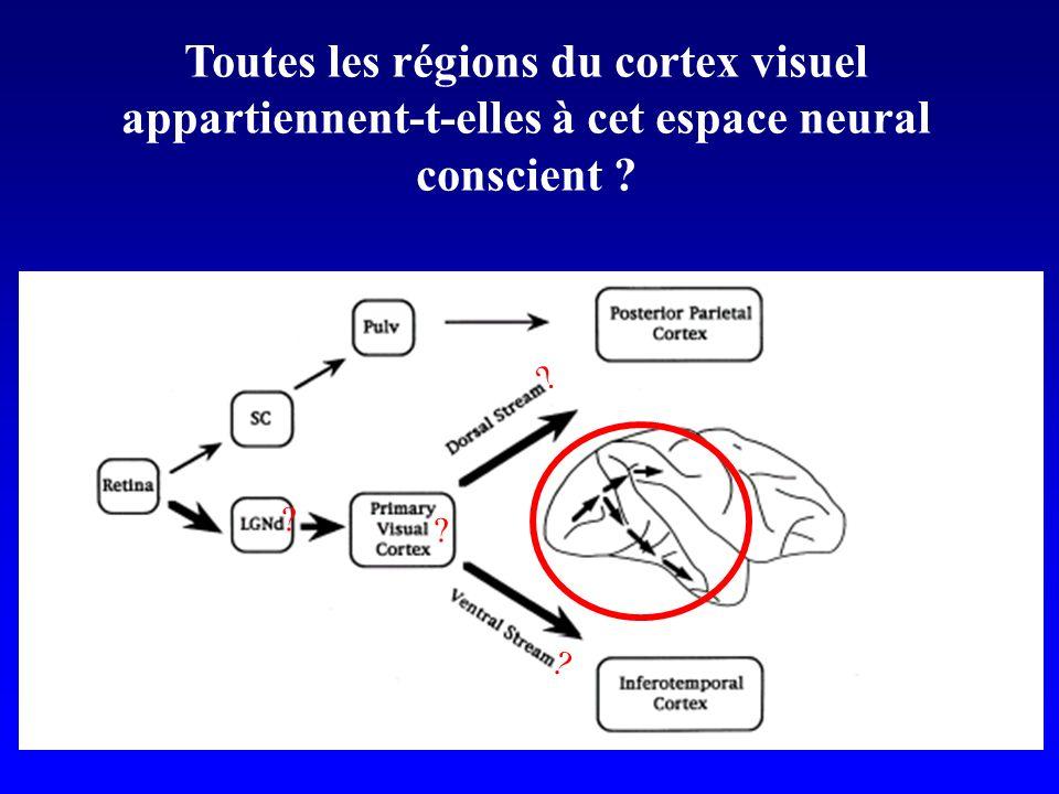 Toutes les régions du cortex visuel appartiennent-t-elles à cet espace neural conscient ? ? ? ? ?