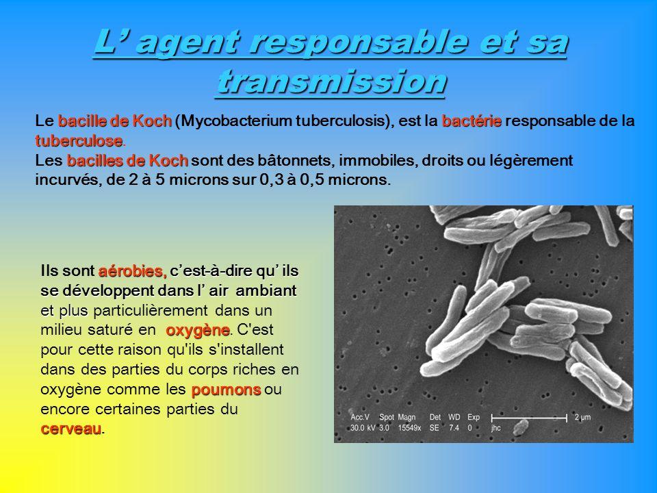 L agent responsable et sa transmission aérobies, cest-à-dire qu ils se développent dans l air ambiant et plus oxygène poumons cerveau Ils sont aérobie